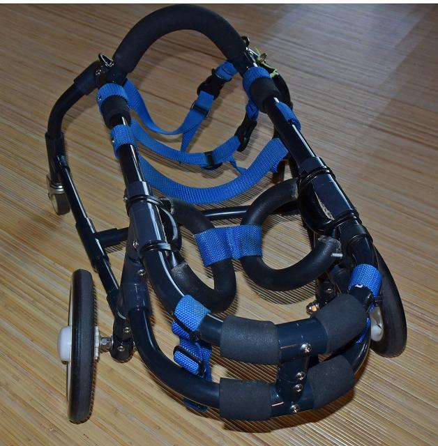 640×480ロン車椅子0558.jpg